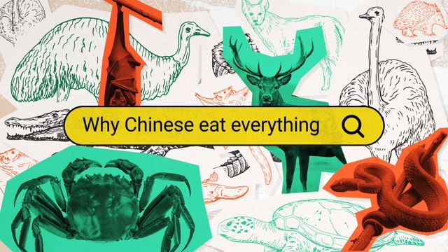 Why Do Chinese People Seem to Eat 'Everything'? - Why Chinese (E1)