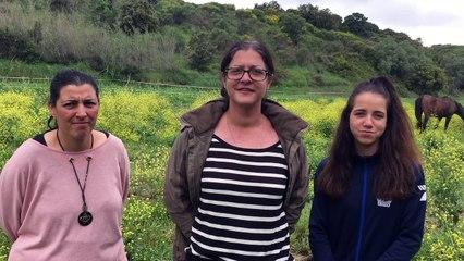 Montfrin : Période difficile pour l'association l'Impulsion