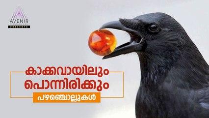 Kakka Vayilum Ponnirikkum | Malayalam Proverbs | Avenir Technology