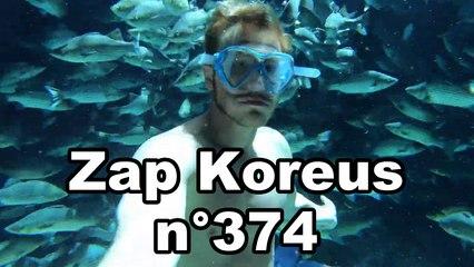 Zap Koreus n°374