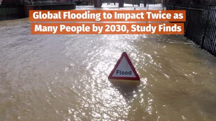 Flooding Is A Growing Issue