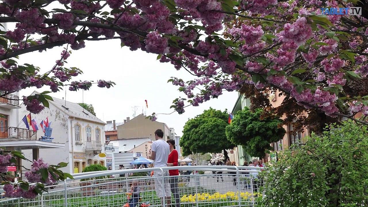 SAMOSPRÁVA: Jančovič: Mali by sme sa viac zamerať na destinačný turizmus