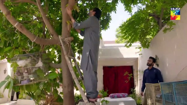Soteli Maamta Episode 44 HUM TV Drama 25 April 2020