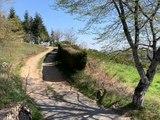 Par Les Villages Confinés St-Didier-sur-Rochefort - Par les villages - TL7, Télévision loire 7