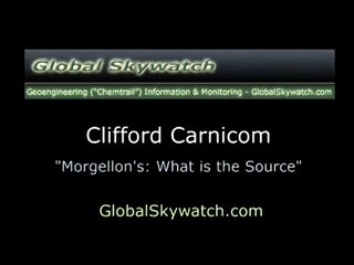 Morgellons - What is the Source?_Part_1