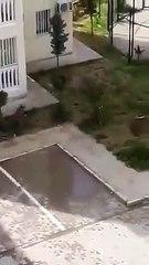 Nusaybin'de TOKİ Konutlarında çocukları kovalayan polis havaya ateş açtı