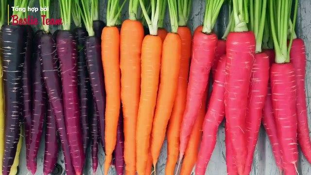 Những điều thú vị về thực phẩm có thể bạn không biết