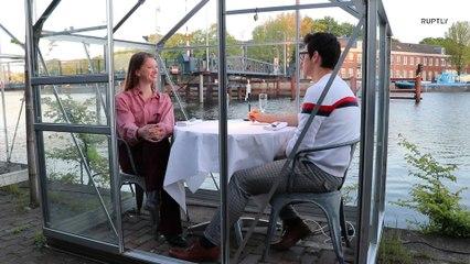 Ресторан в Амстердаме оборудовал столики в теплицах для соблюдения дистанции