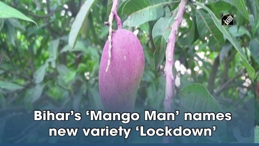 Bihar's 'Mango Man' names new variety 'Lockdown'