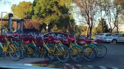 #RicoyCharladito Google