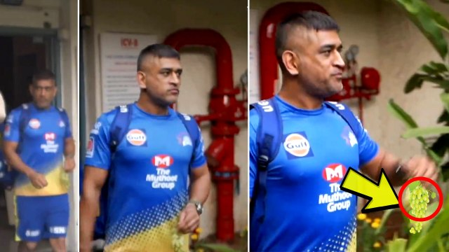 CSK shares 'Sweet King Dhoni's video