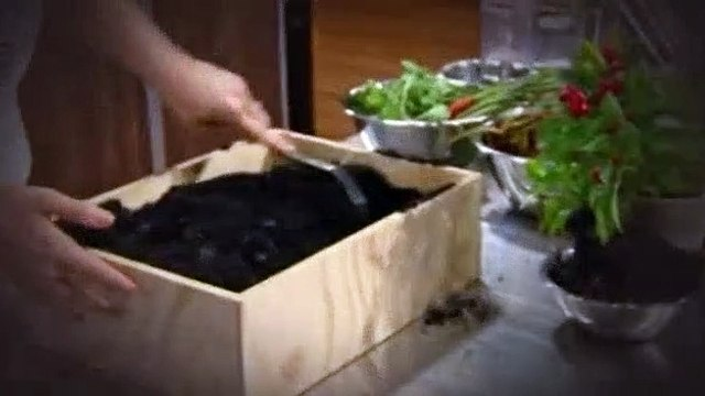 Masterchef Australia S12E28 Vegan Mystery Box