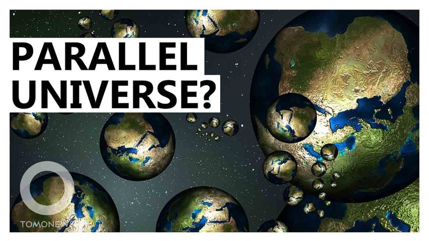 Did We Find A Parallel Universe?