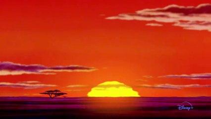 Zenimation Trailer