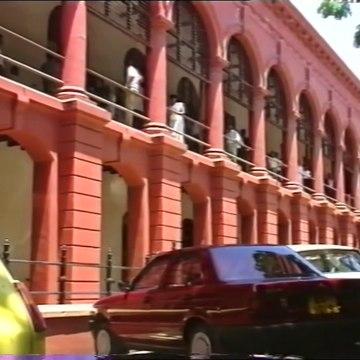 Rathu Rosa - Episode 24 | Sinhala Teledrama