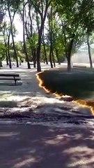 Les images surréalistes d'un incendie de pollen en Espagne