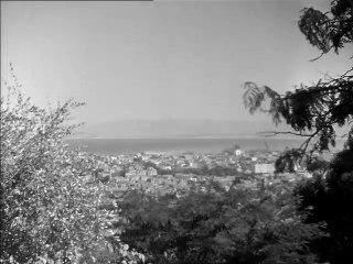 Algérie terre d'action