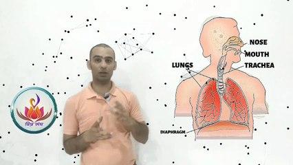 AIVASAFAL : Symptoms and Corona : Viney Pushkarna