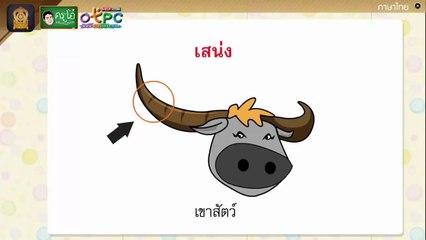สื่อการเรียนการสอน เรียนรู้คำศัพท์เรื่อง ห้องสมุดป่า ป.4 ภาษาไทย