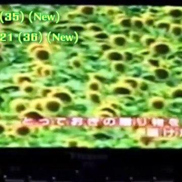 All the 128 Japanese Analogue TV Shutdown Shots (Part 2)