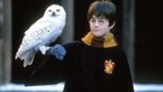 HBO Max Streaming Harry Potter Film Library   THR News