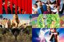 Estos son los estrenos de Netflix para junio de 2020