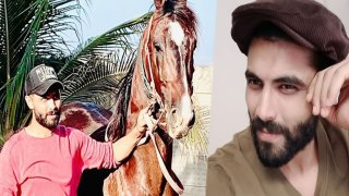 Ravindra Jadeja goes for a walk with Horse in his farm house