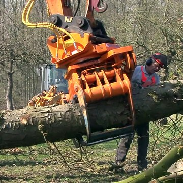 Cutting Trees with an Excavator | Innovative Tree Shear | Forestry and Landscaping