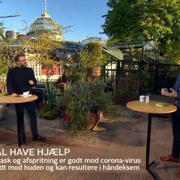 COVID-19; Afspritning er hårdt for hænderne - giv dem fugt og pleje | Go morgen Danmark | TV2 Danmark