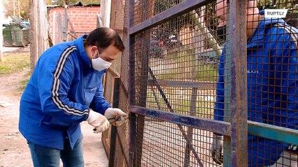 Comunidade na Argentina é posta em quarentena após dezenas aparecerem com COVID-19