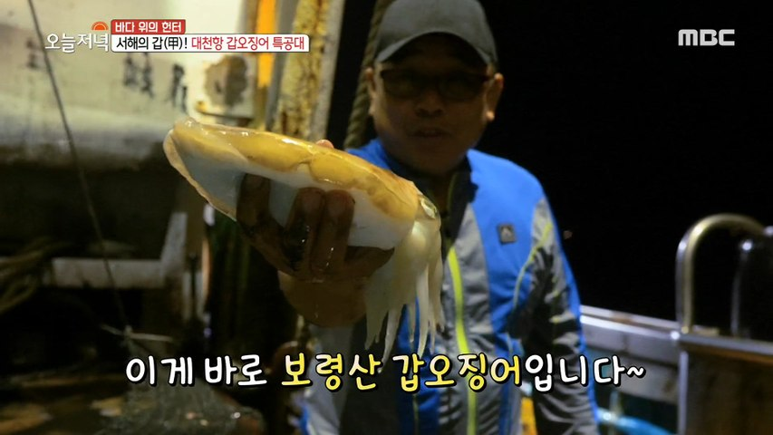 [HOT] Daecheon Port Gapo Squid Special Forces, 생방송 오늘 저녁 20200602