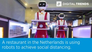 A restaurant in the Netherlands is using robots to achieve social distancing.