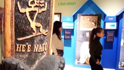 Danse au musée [Film]