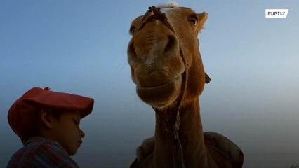 Menino de sete anos anda 30 quilômetros a cavalo para conseguir internet para mandar dever de casa