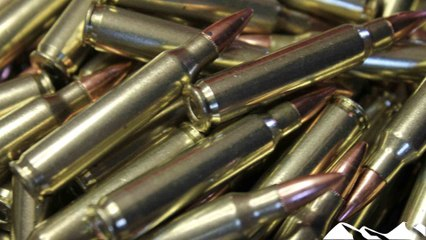Rifle ammunition survey results