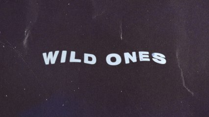 Jonathan Traylor - For The Wild Ones