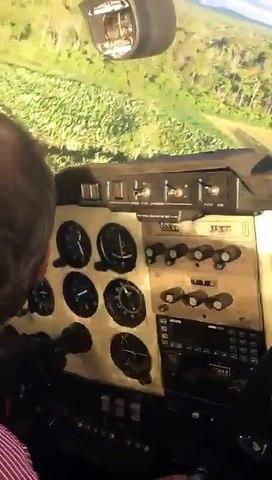 Un pilote d'avion obligé d'atterrir en pleine forêt
