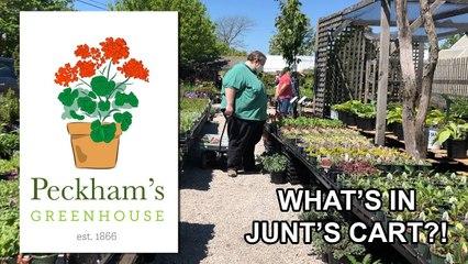 What's in Junt's Cart? - Peckham's Greenhouse