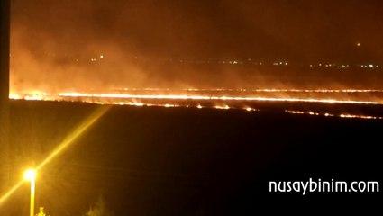 Nusaybin'de sınırdaki mayınlı alanda yangın çıktı