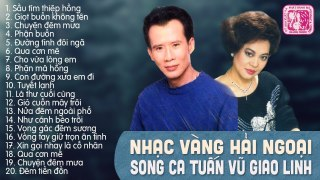 GIAO LINH TUẤN VŨ SONG CA ĐỂ ĐỜI THẬP N