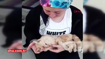 Kedisi Vahşice Öldürülen Burcu Akyıldız'ın Gözyaşları Yürek Yaktı