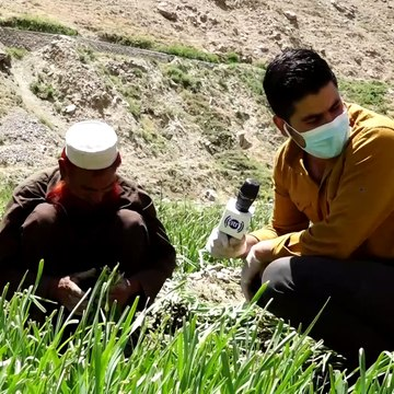#HamayonAfghan Special Report - Shatoot village / گزارش ویژۀ همایون افغان از قریه شاتوت - بخش دوم