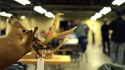 Buck Scoring at the Outdoor Life/Field & Stream Expo Series