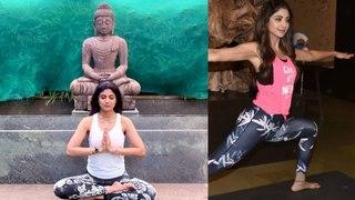 Shilpa Shetty home yoga for world international yoga day