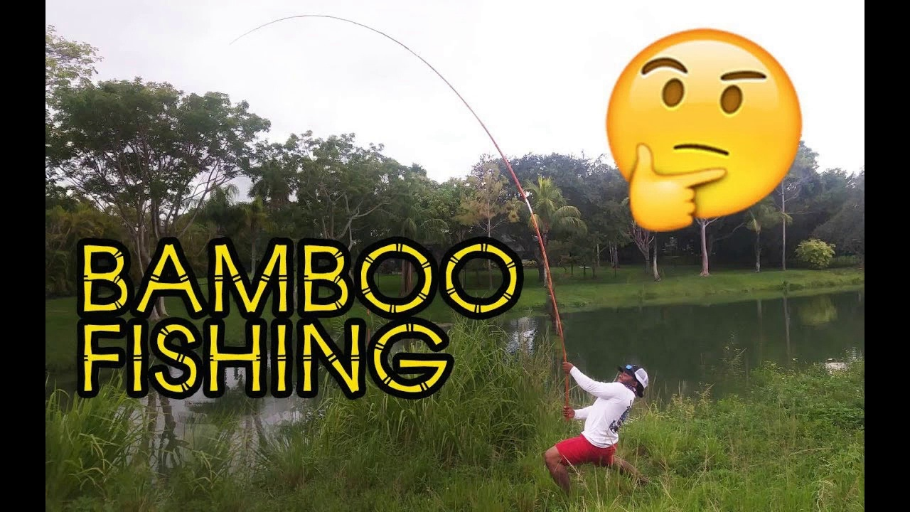 Fishing with BAMBOO POLES!