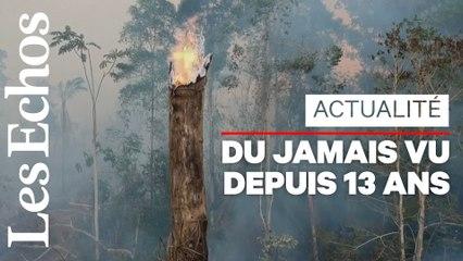 Brésil : l'Amazonie de nouveau sous la menace des incendies