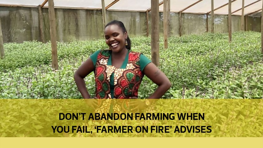 Don't abandon farming when you fail, 'Farmer on Fire' advises