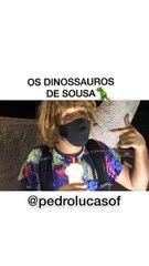 Jovem viraliza na web ao compartilhar vídeo bem humorado sobre os dinossauros sousenses