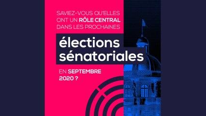 [Sénatoriales 2020] Municipales et sénatoriales 2020