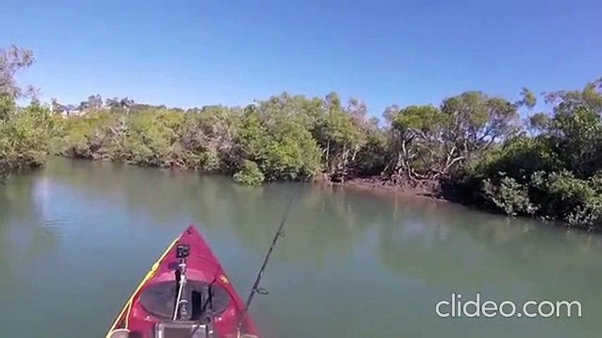 Un kayakiste tranquille... ou pas